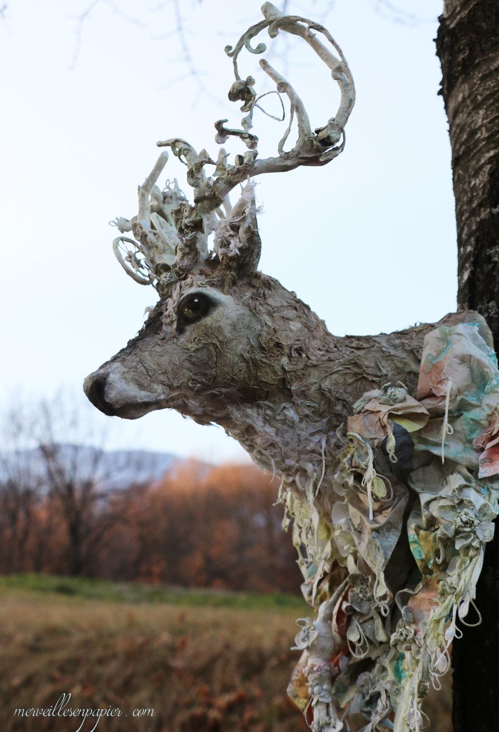 deer trophy 2.jpg