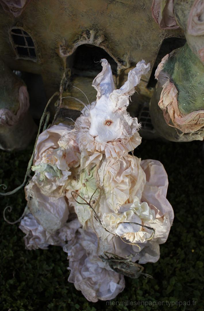 lapin-blanc-alice (2).jpg