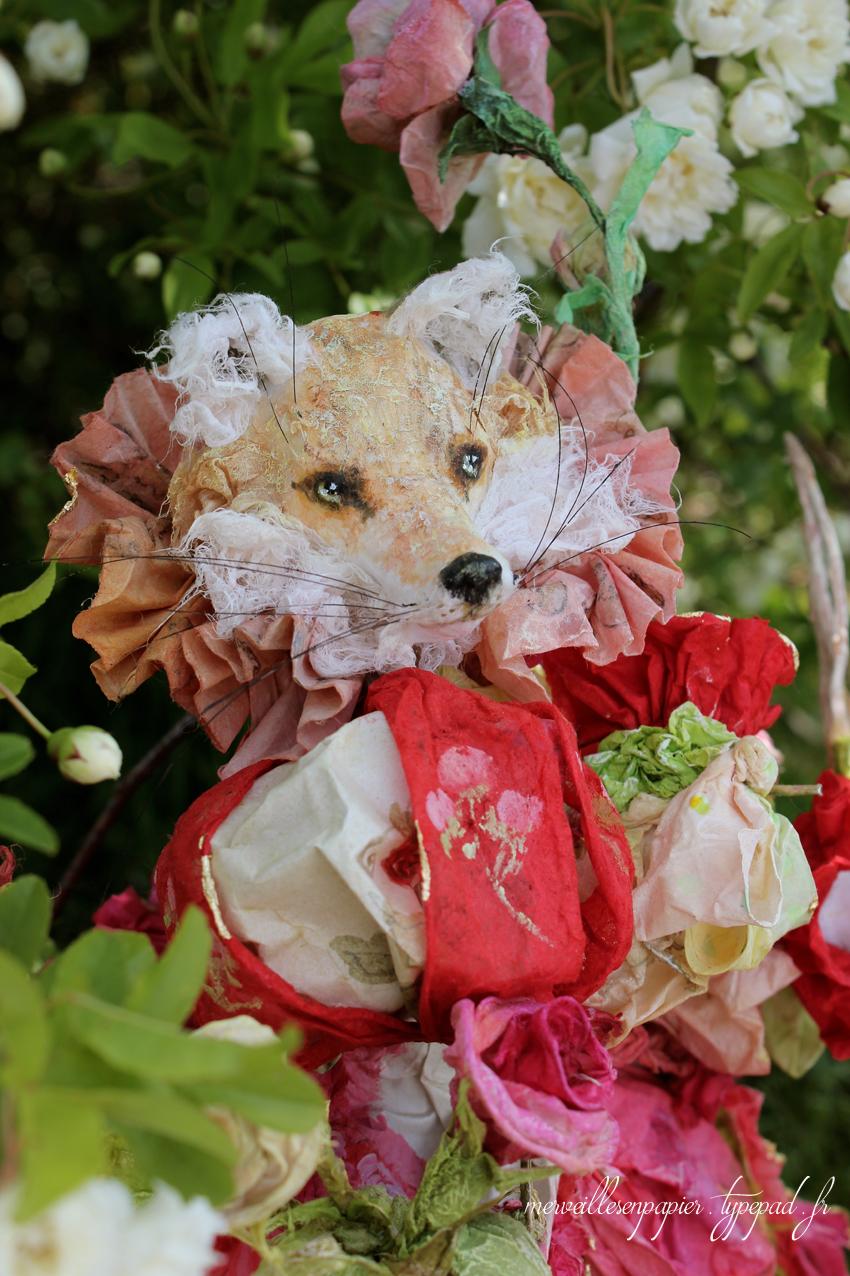 renard-jardinier-22.jpg