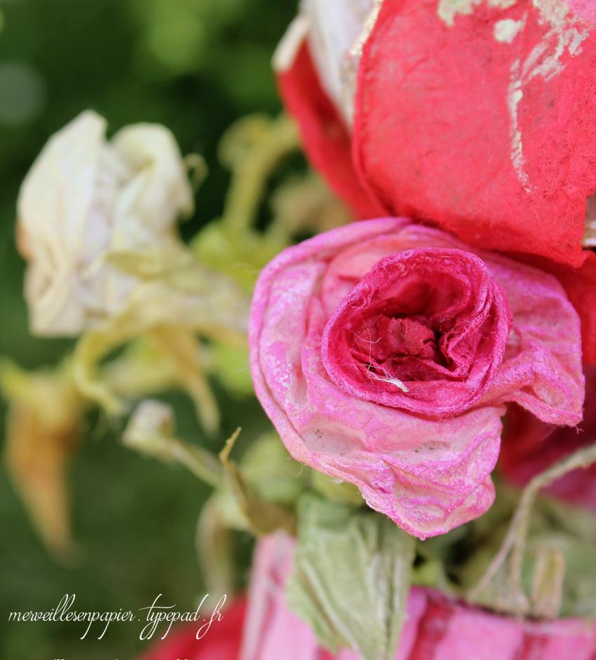renard-jardinier-instagram-1.jpg