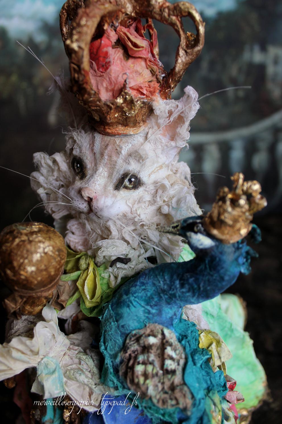 roi-chat-26.jpg