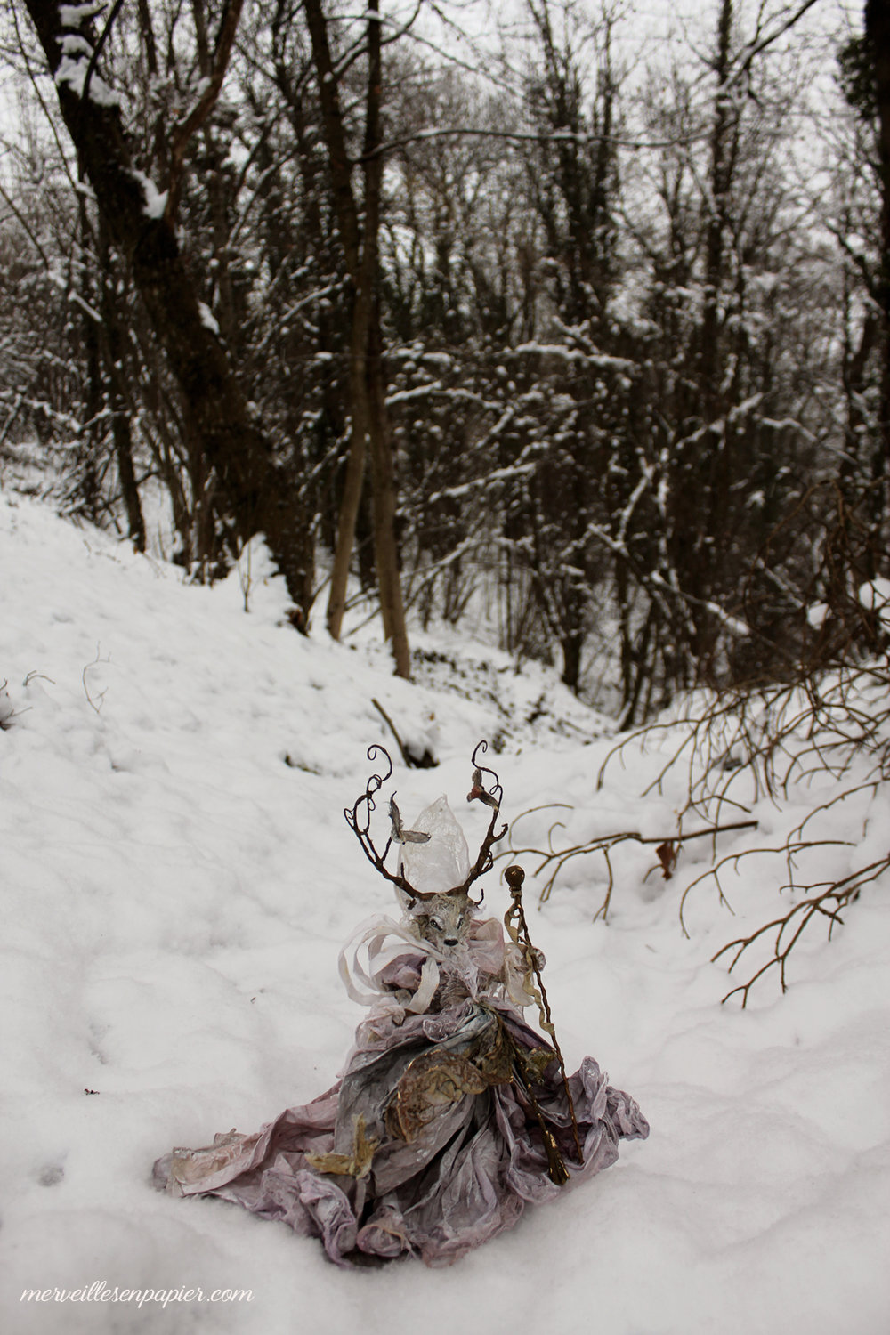 winter-deer-89.jpg