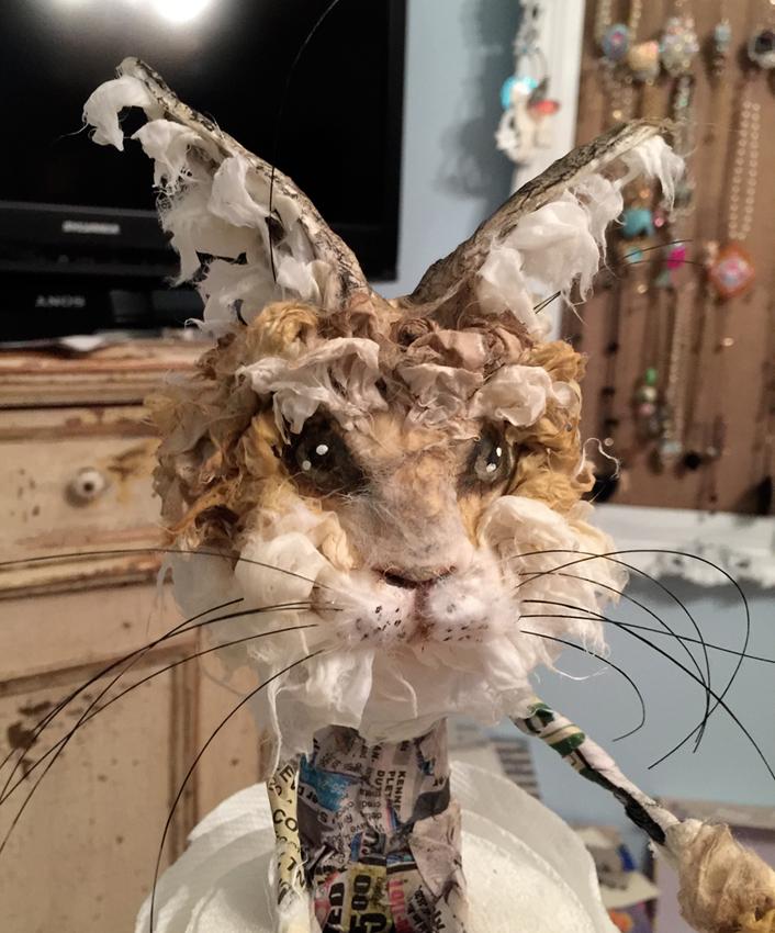 Kimberly's hare