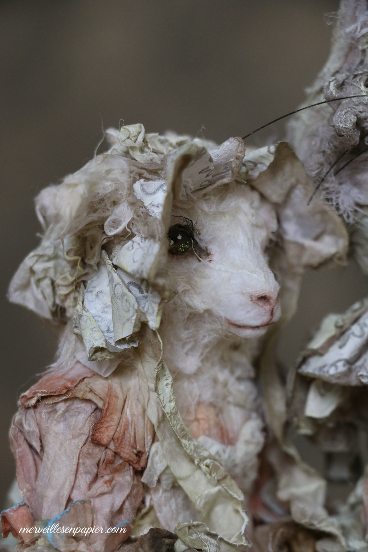 goat--child-108.jpg