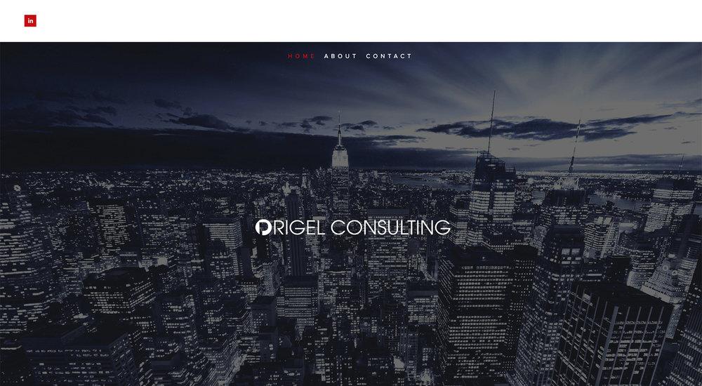 Origel Consulting website designed by Two Eye Monkey