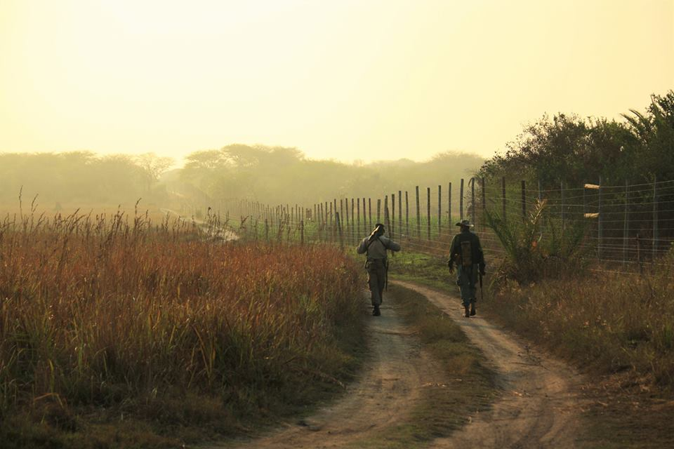 Anti-poaching rangers on patrol at Tembe Elephant Park, South Africa. Photo credit: Clinton Wright.
