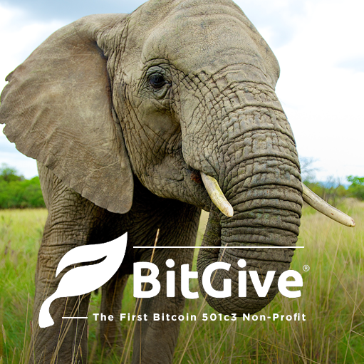 _0002_bitgive-press-release.png
