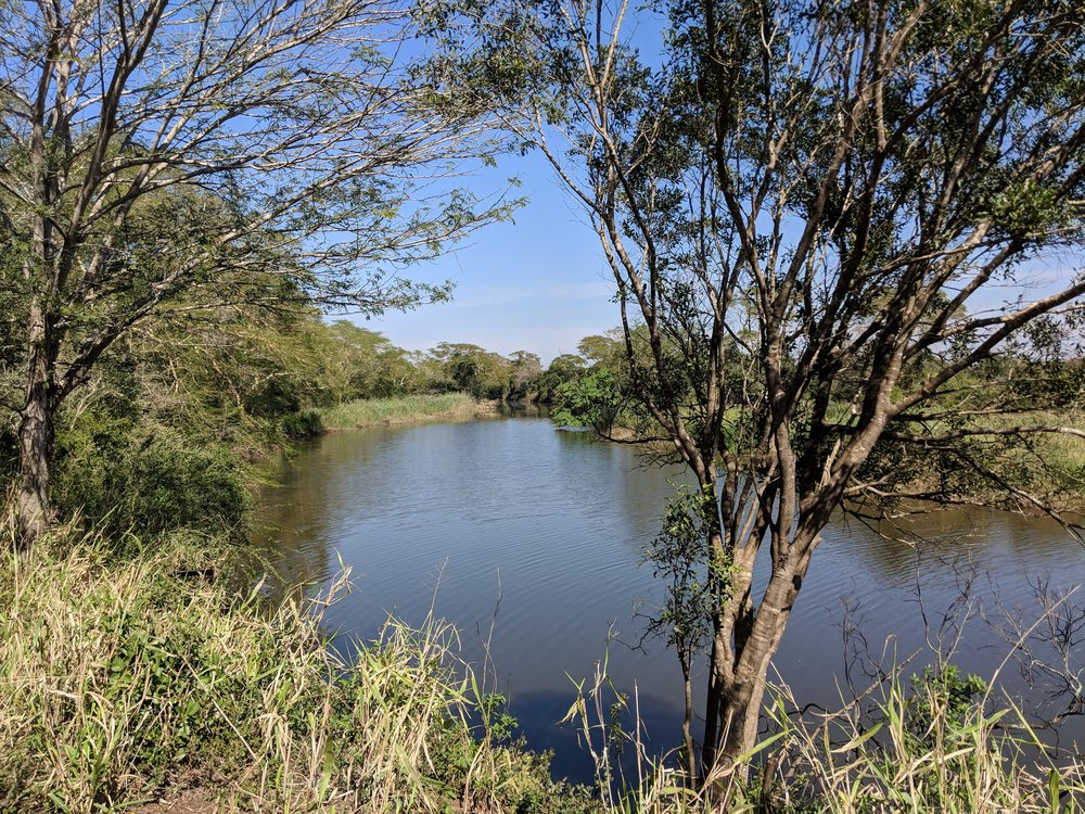 View from the bank of the Mzinine River, the northern border of our conservancy Ukuwela.