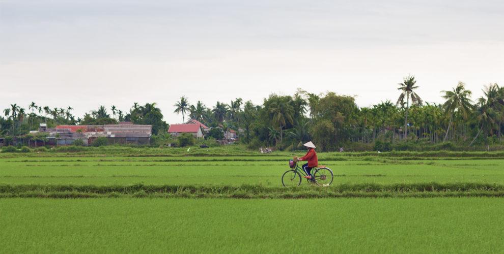 VIETNAM - Aprile 2019
