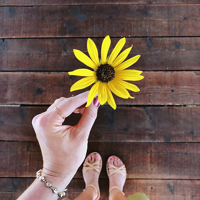 Very little is needed to make a happy life! *Take time to notice the small things! 🌻