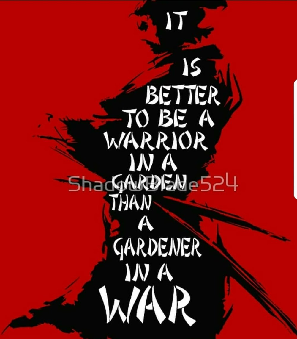 """It is better to be a warrior in a garden than a gardener in a war.""   - Sun Tzu  For all those considering getting back in shape, learning martial arts/ self-defense or making their kids bully proof. You can be certain there are many out there that will take your family's lunch when the opportunity presents itself."
