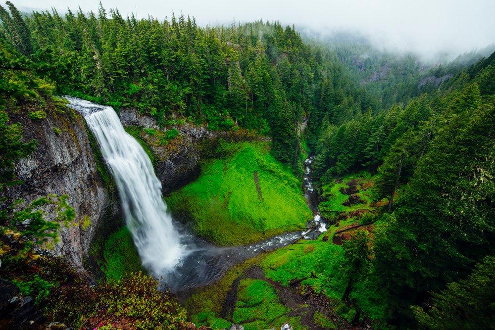 Salt Creek Falls, United States.jpg