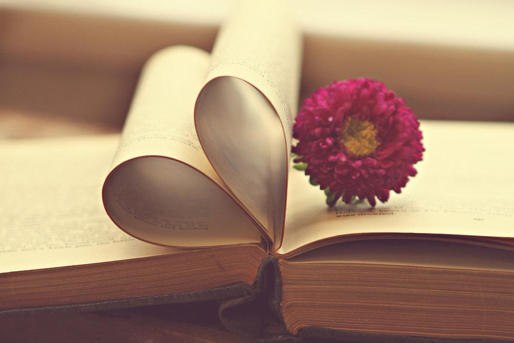book lover.jpg