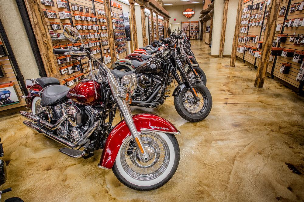 Highline Autos - Desert Wind Harley Davidson-28.jpg