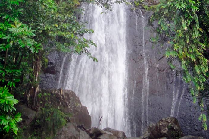 OFF-SITE EXCURSIONS - Embark on a unique excursion or enjoy a specialized tour of Puerto Rico.