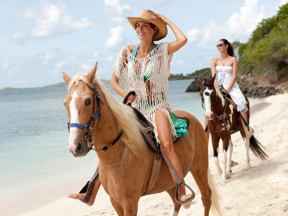 HORSEBACK RIDING - Enjoy a memorable horseback ride in a unique natural environment, one that you could not duplicate any place on earth. Ride gentle, but spirited