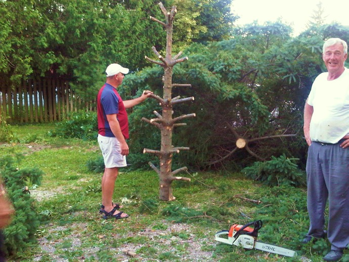 jane_making_dead_tree3_med.jpeg