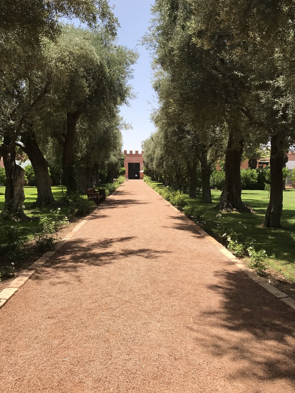 La Mamounia Marrakesh Outdoors