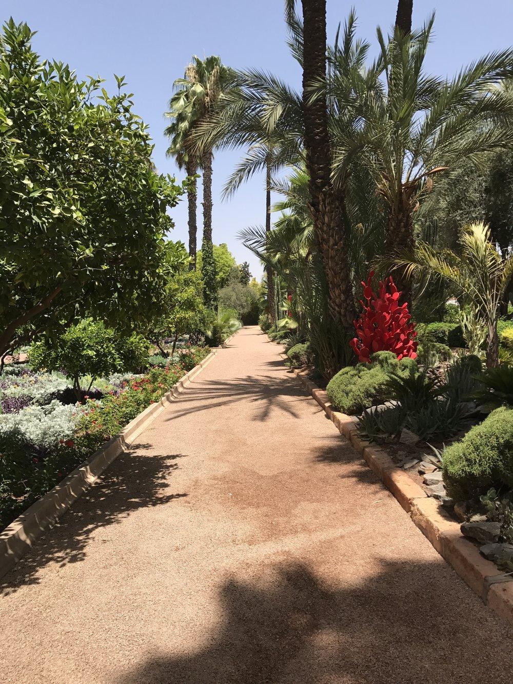 Side garden at La Mamounia