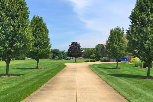 Edging (Sidewalks, Curbs, Driveways) - Do you want picture perfect? Edging is the perfect complement to a well mowed and trimmed lawn that will make your neighbors envious.