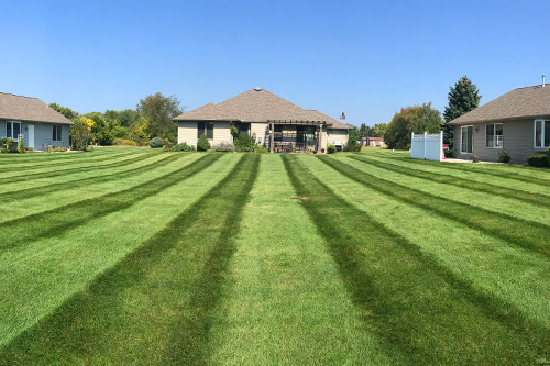 Lawn Mowing - All of our clients are on a weekly mowing schedule. Each week our team of professionals will mow, trim around obstacles, and blow off your driveway, walkways, and patios making them free of debris.