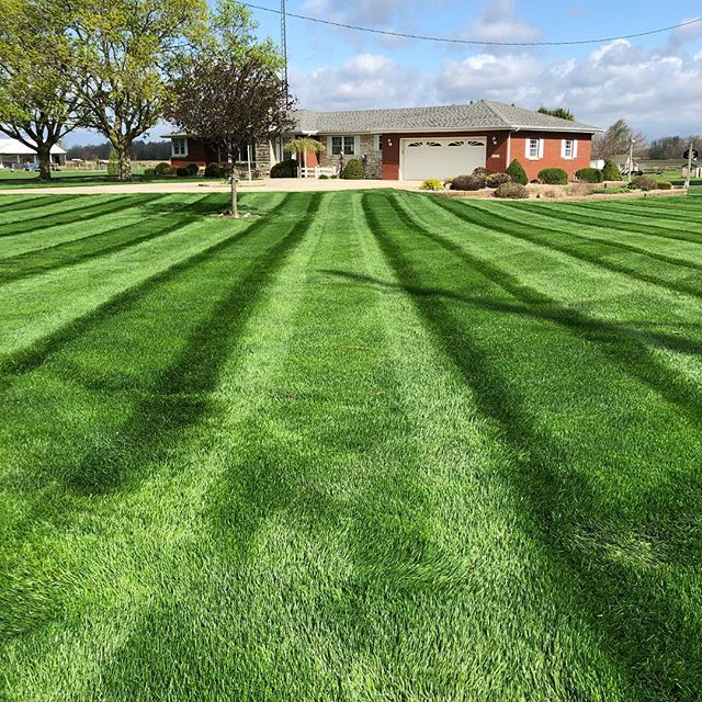 Our fertilizing products + our weekly mowing service = results that'll leave your neighbors envious! #grassguru #grass #green #stripes #lawncare #business  #entrepreneur #lawncareservice #exmark #turf #mowing #elkhartcounty #goshen #elkhart #newparis #bristol #nappanee #wakarusa @advancedturf @exmarkmanufacturing @ltrichproducts