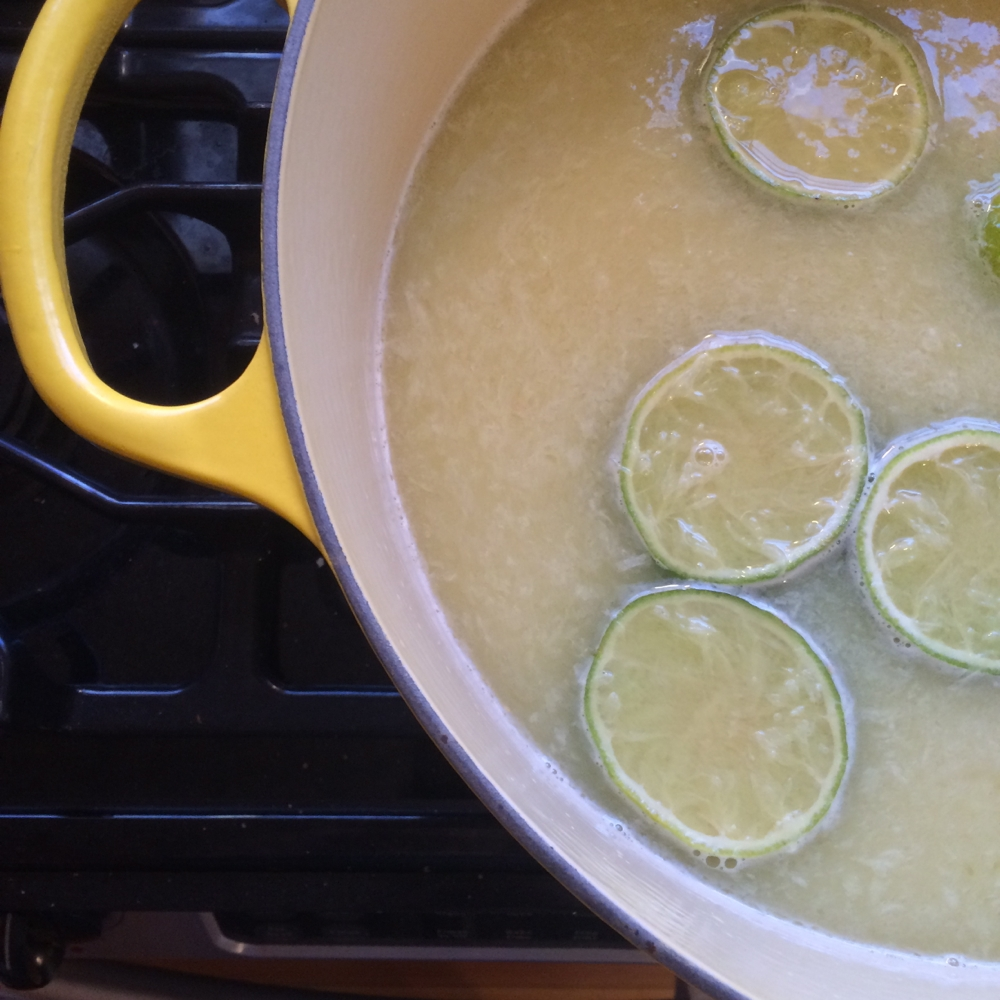 Ginger Beer Cooking, credit Kirsten Akens 2015