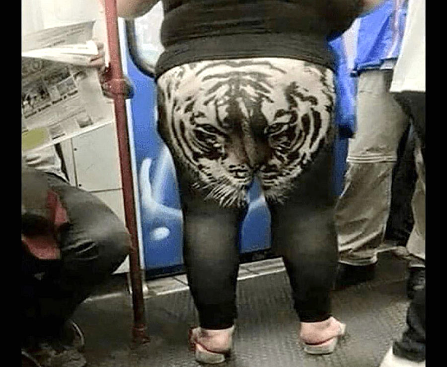 lion leggings.jpg