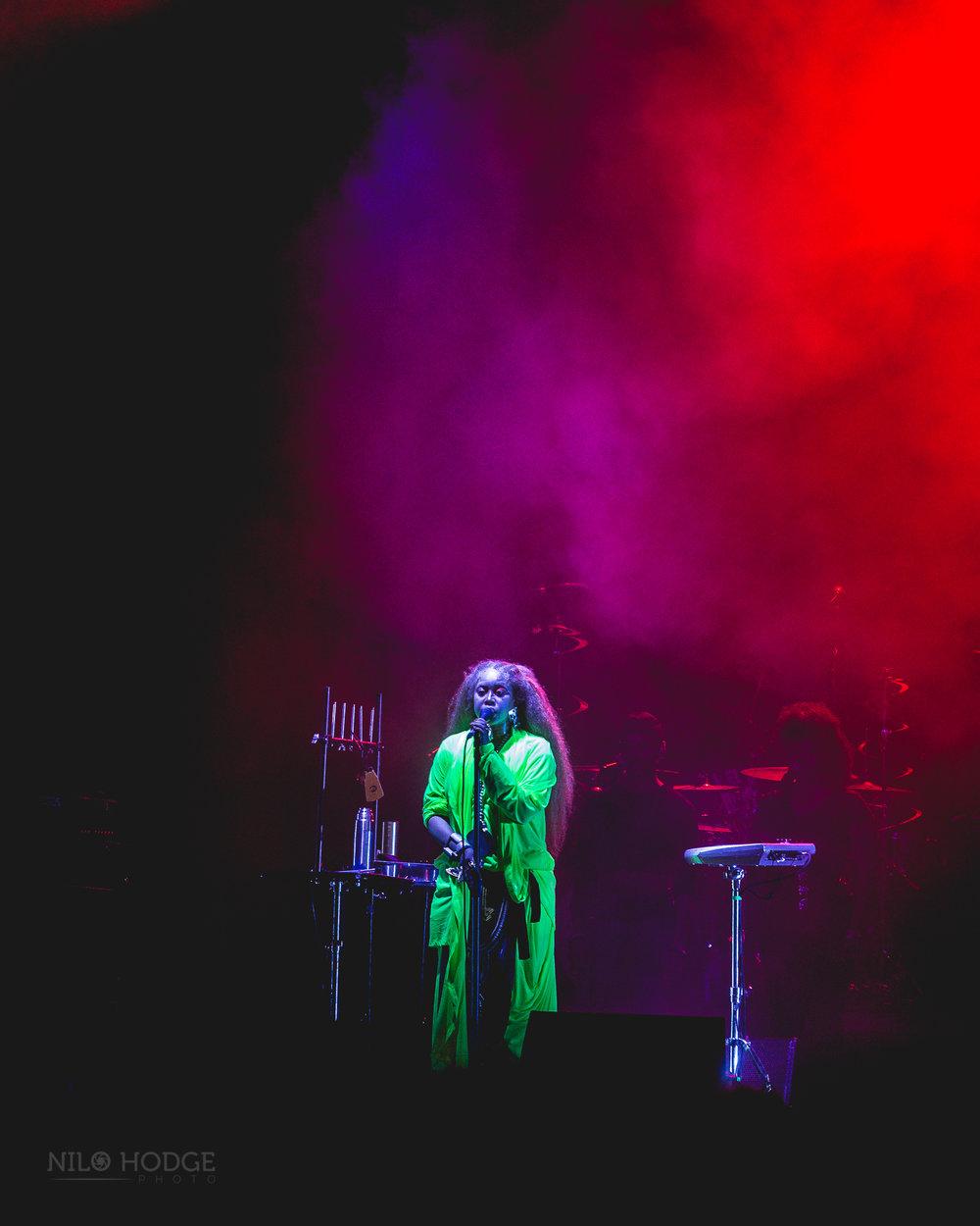 Erykah Badu at AfroPunk Fest in Brooklyn, NY