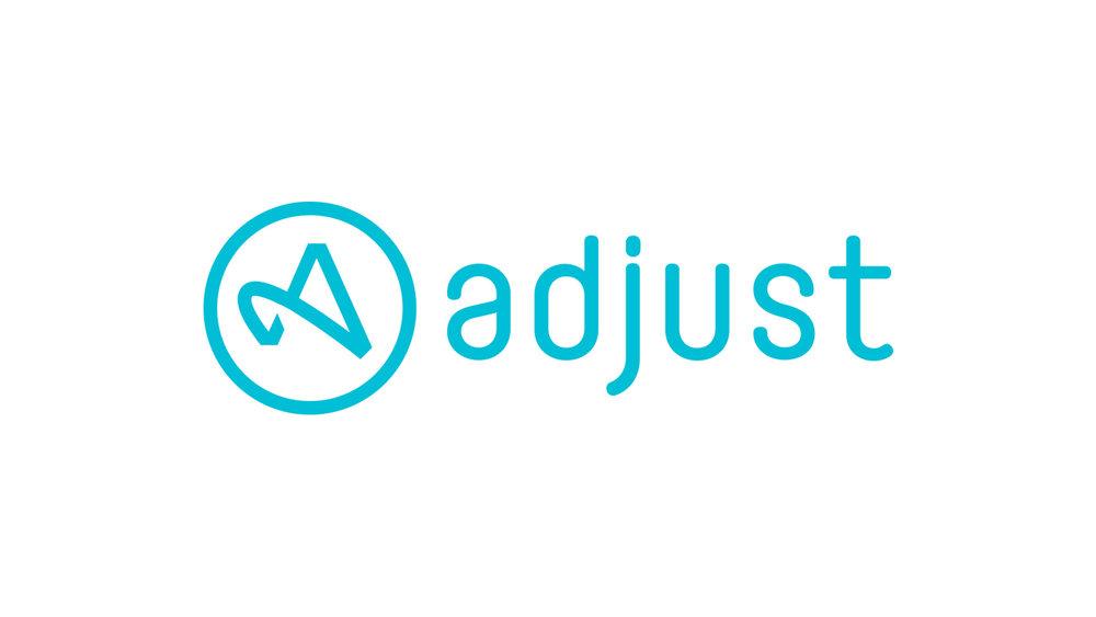 adjust.jpg