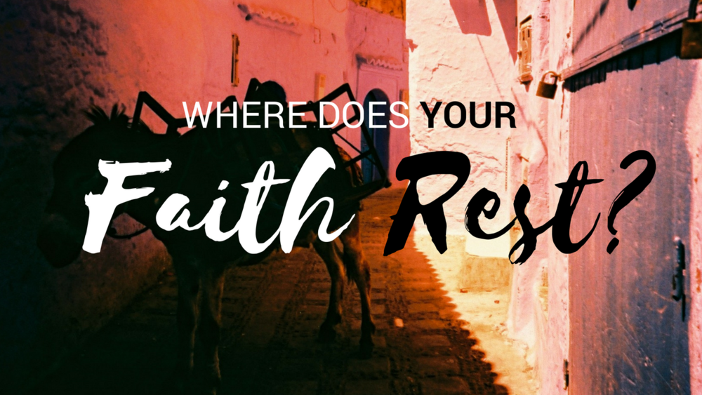 Don't be a donkey! - Learn how to operate your faith in rest.