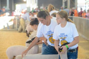 FFA members show sheep during the Iowa State Fair in Des Moines last week. Gary Slater, Fair Manager and CEO for the Iowa State Fair, says that the Iowa State Fair would not be what it is today without livestock competitions.