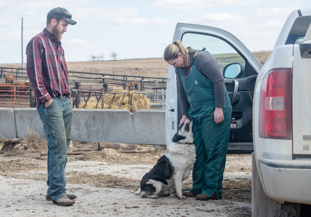 Katie Lang pets Jag after providing care for a cow and ewe at Brady McClenathan's farm near Brooklyn.