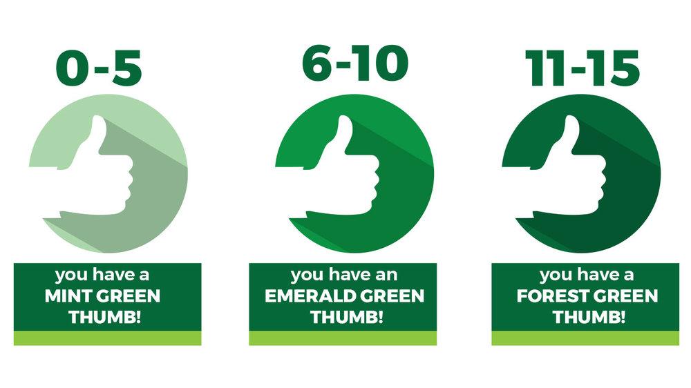 IFFP18_GreenThumb_A.jpg