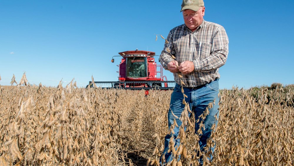 Bill Shipley, Iowa Soybean Association president from Nodaway, says producers are resilient but may face significant financial impacts should China retaliate on the latest round of tariffs from the U.S. Photo credit: Joseph L. Murphy/Iowa Soybean Association
