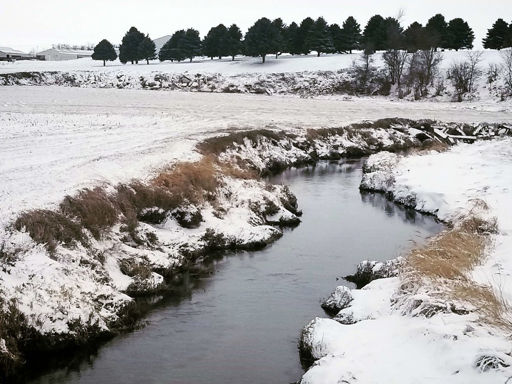 A winter stream in Calhoun County. Photo credit: Darcy Dougherty Maulsby