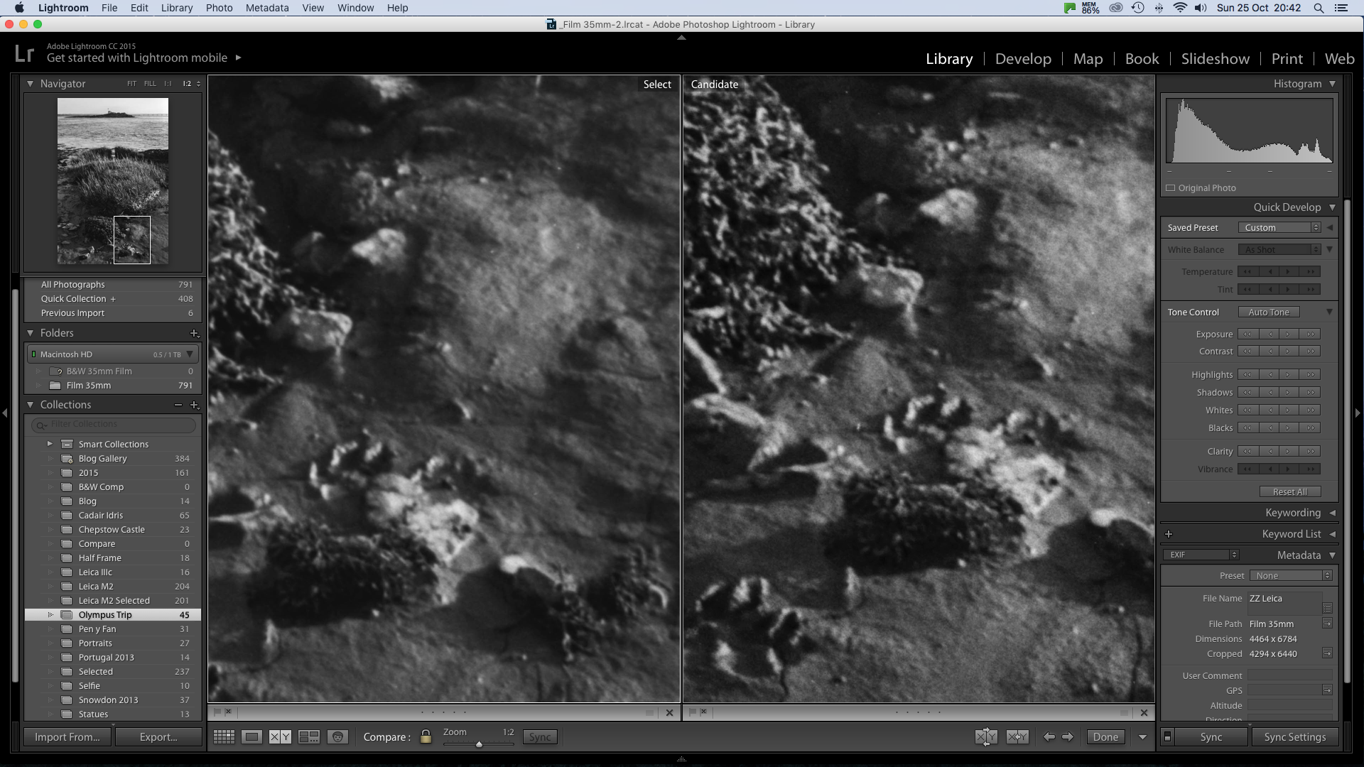 It should be obvious which one is Pan F Plus!