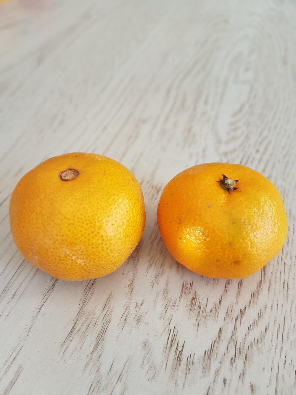mandarin orange chinese vs japanese.jpg