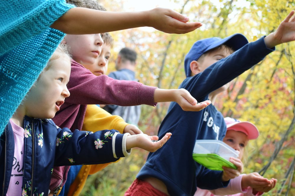 why kids need to connect with nature