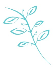 Babbles & Bliss - A Lifestyle Blog