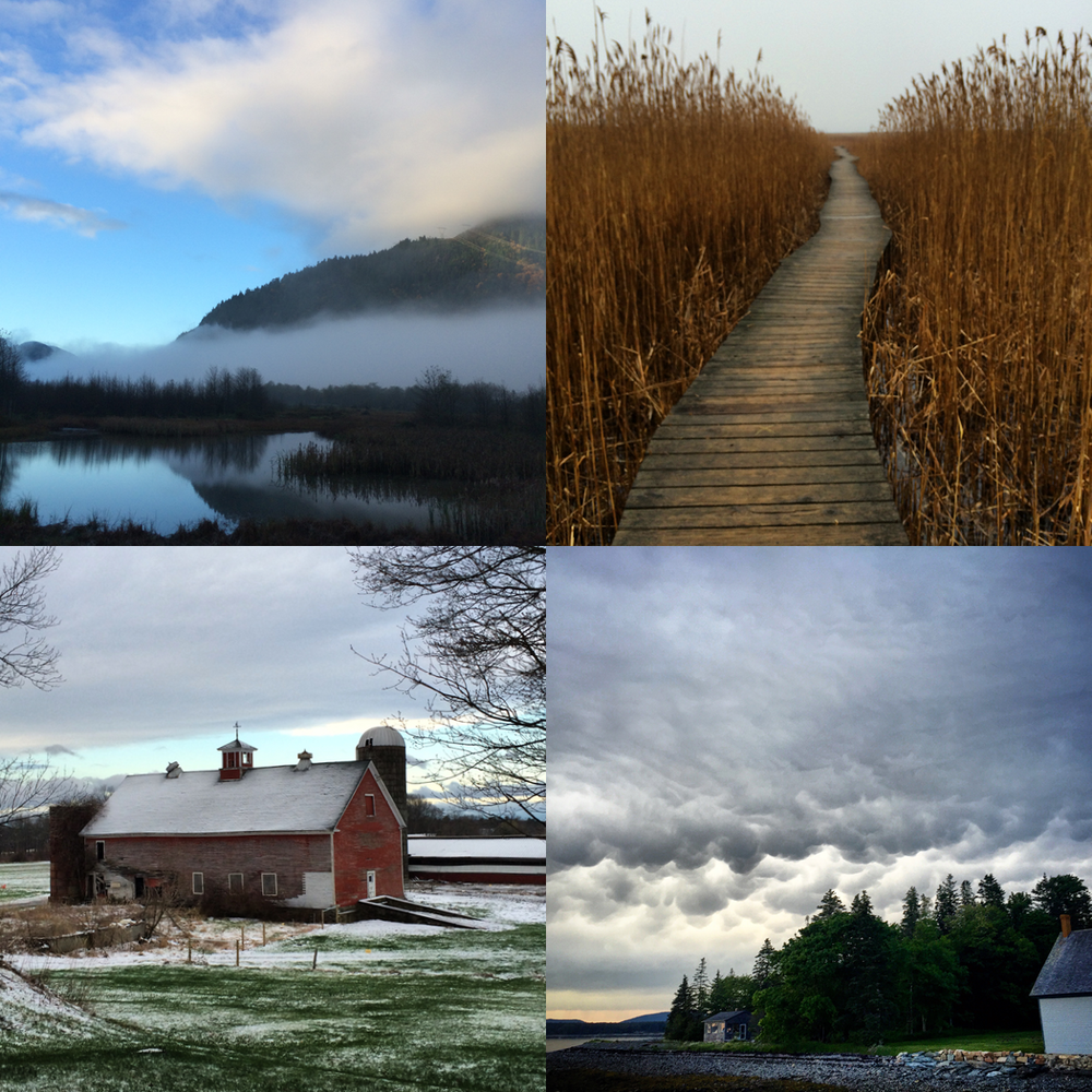 """""""Every single day, no matter the weather, no matter where I am, I go for a walk."""" (Photographs by Libby DeLana)"""