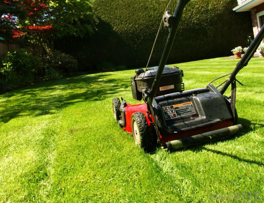 mower-cutting-green-grass.jpg