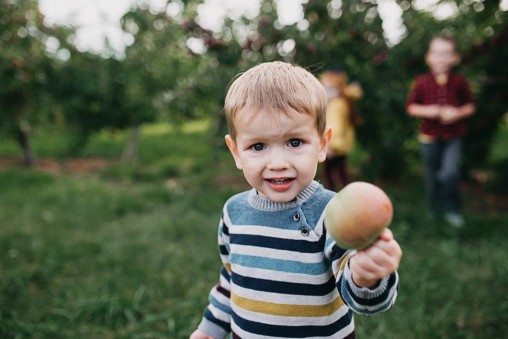 Poirier.orchard.comp--3.jpg