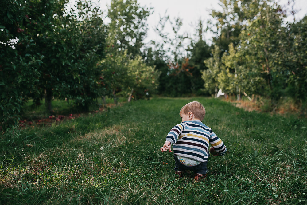 Poirier.orchard.comp--110.jpg