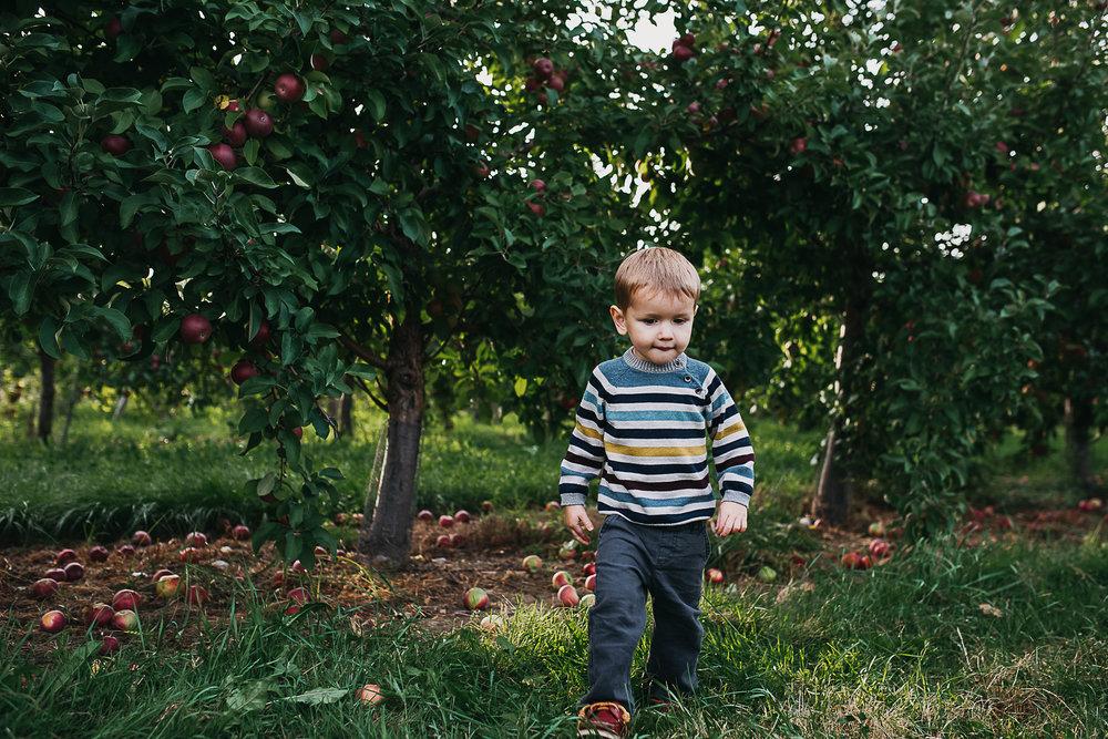 Poirier.orchard.comp--112.jpg