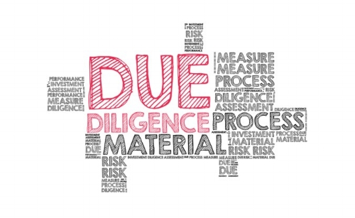 Diligence Word Cloud.jpg