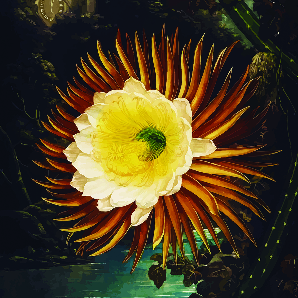 DARK yellow Flower 22SQ.jpg