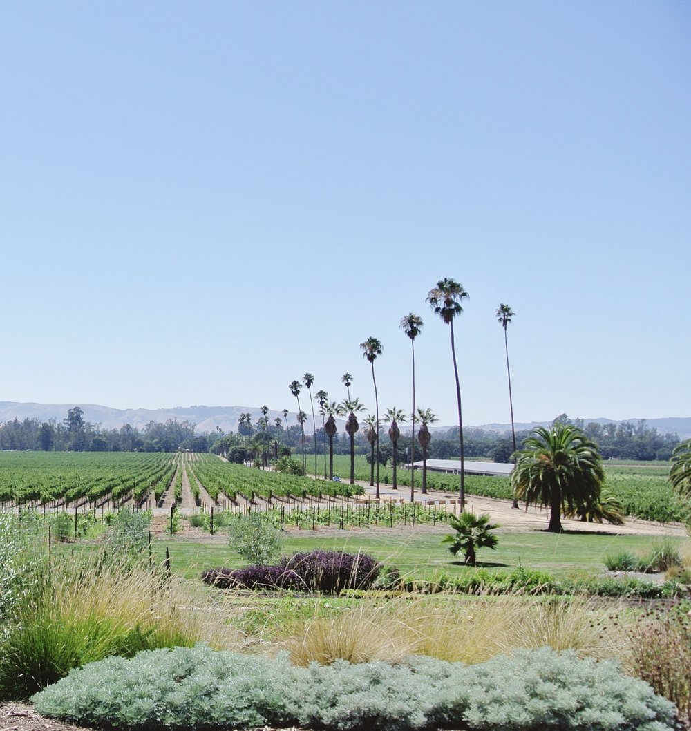 Day trip to Scribe Winery via Crush Co.