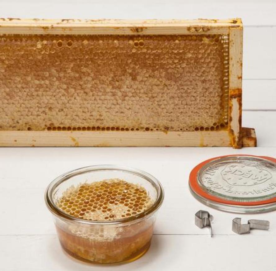 Will You Bee My Honey? - 8.