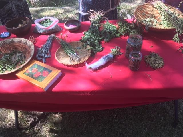 herbs+henrietta.jpg